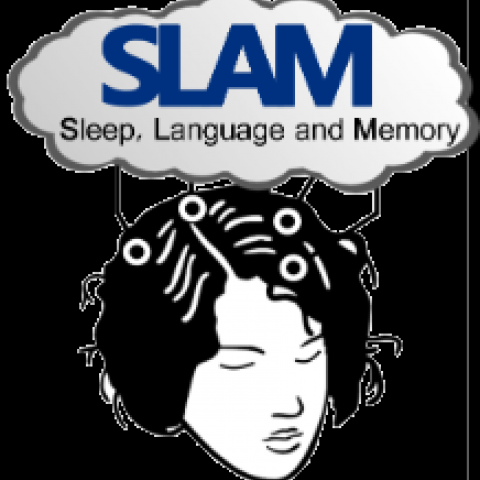SLAM Study Booking